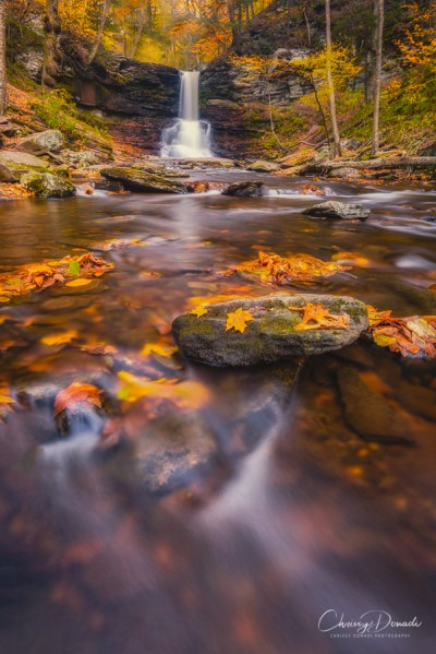 Fall Photography Shooting Tips Blog Post by Landscape Photographer Chrissy Donadi