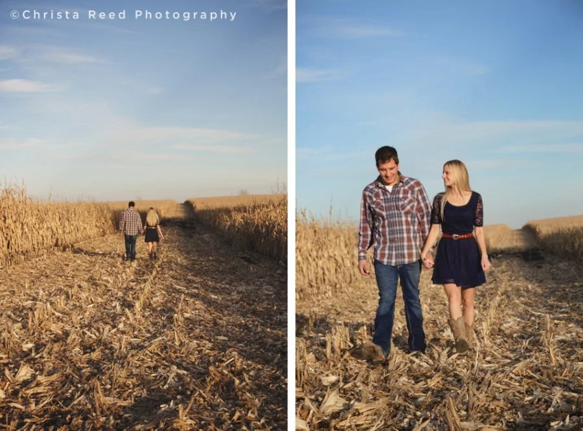 engaged couple holds hands walking through a cornfield in belle plaine minnesota