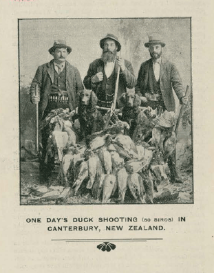 Photo of duck shooters in 1902
