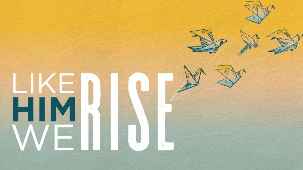 Like Him We Rise