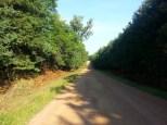 Around Belle Plaine MN Teien (65)