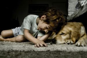 young child playing with a dog