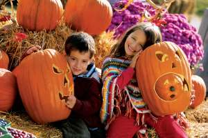 A brother and sister sit in a pumpkin patch holding jack-o-lanterns.