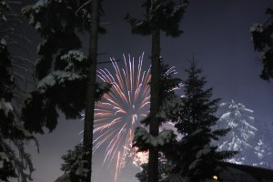 Fireworks behind snowy trees.