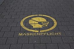 Hinnerk11, CC BY-SA 4.0 , via Wikimedia Commons