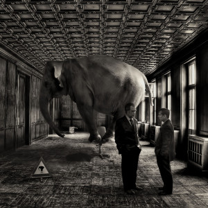 Organisational stress - the elephant in the room