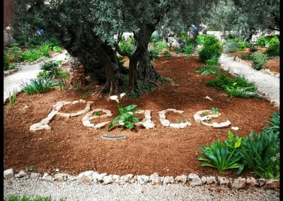 Peace in Garten Getsemani