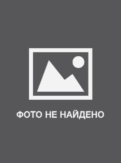 Текстовые проповеди Ричарда Циммермана. Читать онлайн