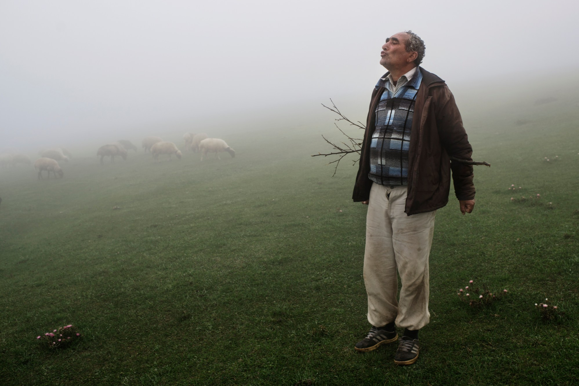 An old herdsman tending his huge herd of goats near Deylaman in the Alborz Mountains.