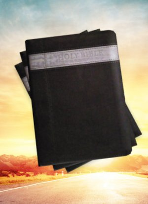 Kjv Grey zip Holy Bible