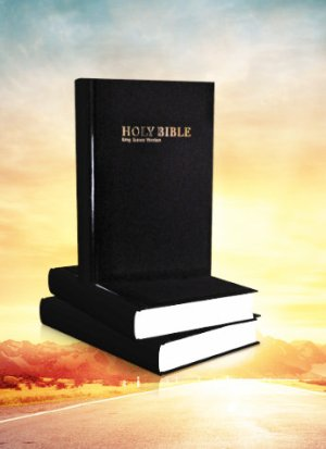 Kjv Holy Bible Hard cover