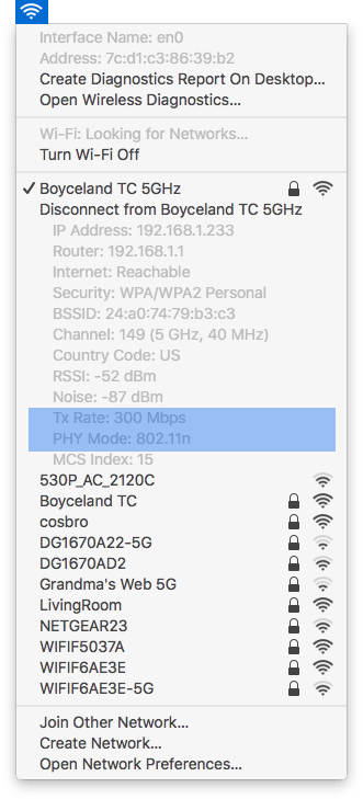 WiFi menu with the Option key held down first