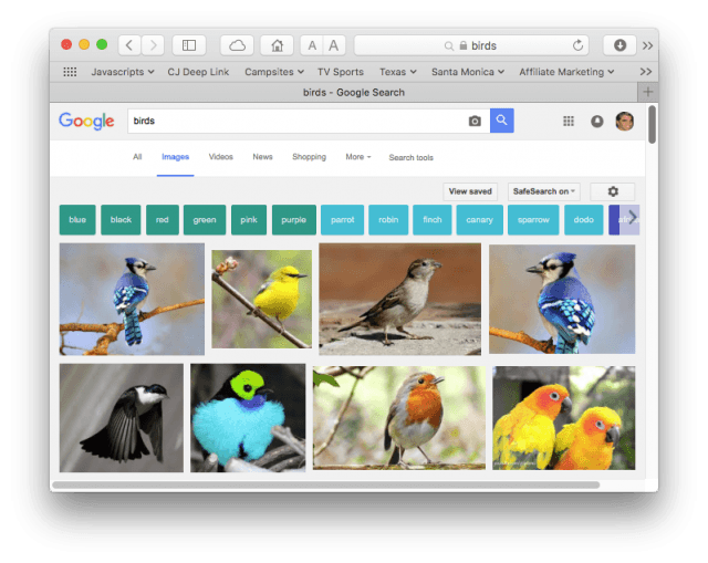 "Google image search results for ""birds"""