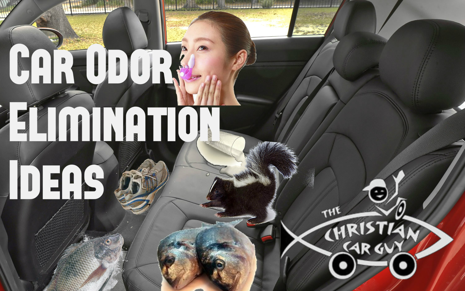 Car Odor Elimination Ideas