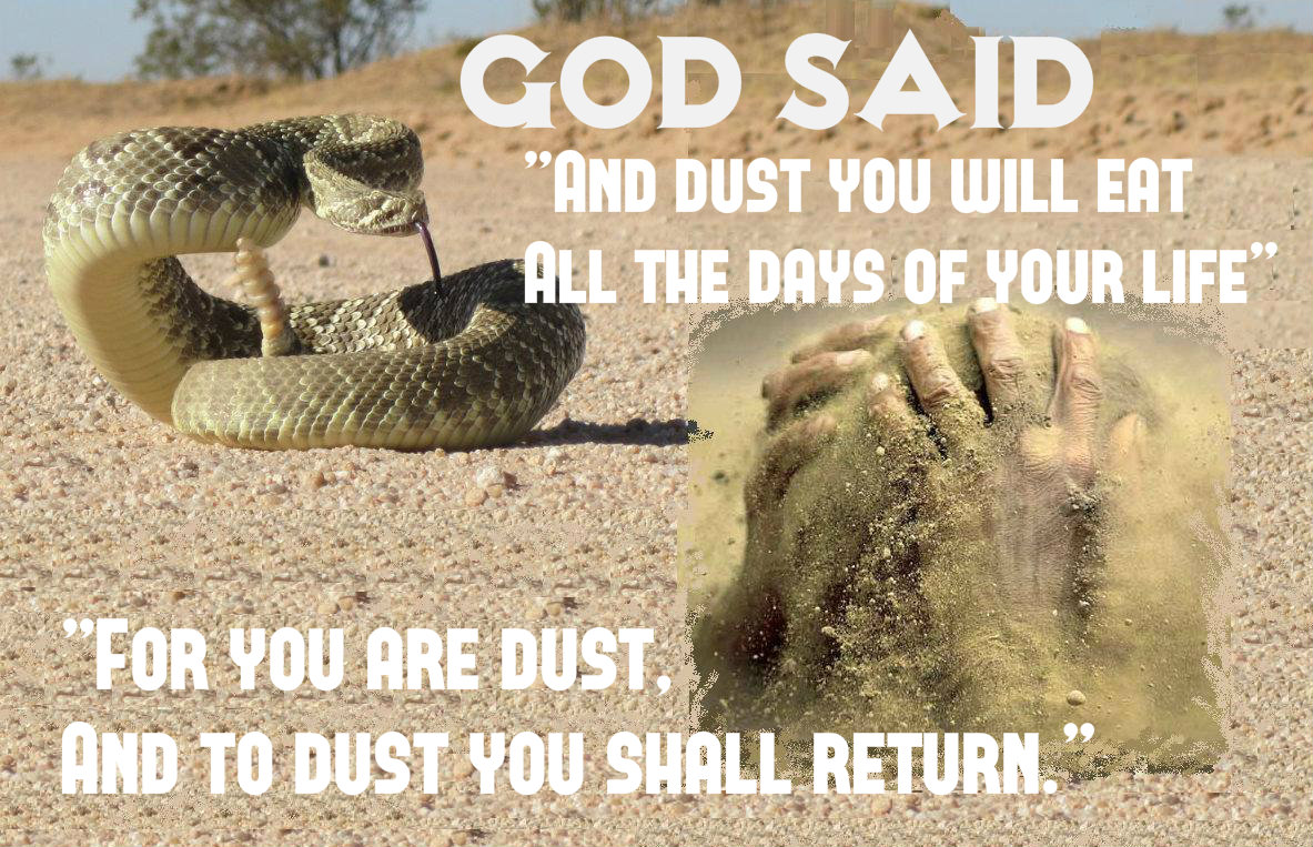 dust and man(3)