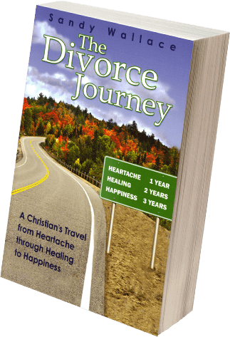 The Divorce Journey