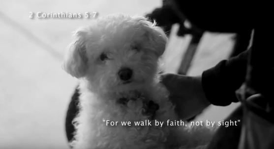 Faith  a short film