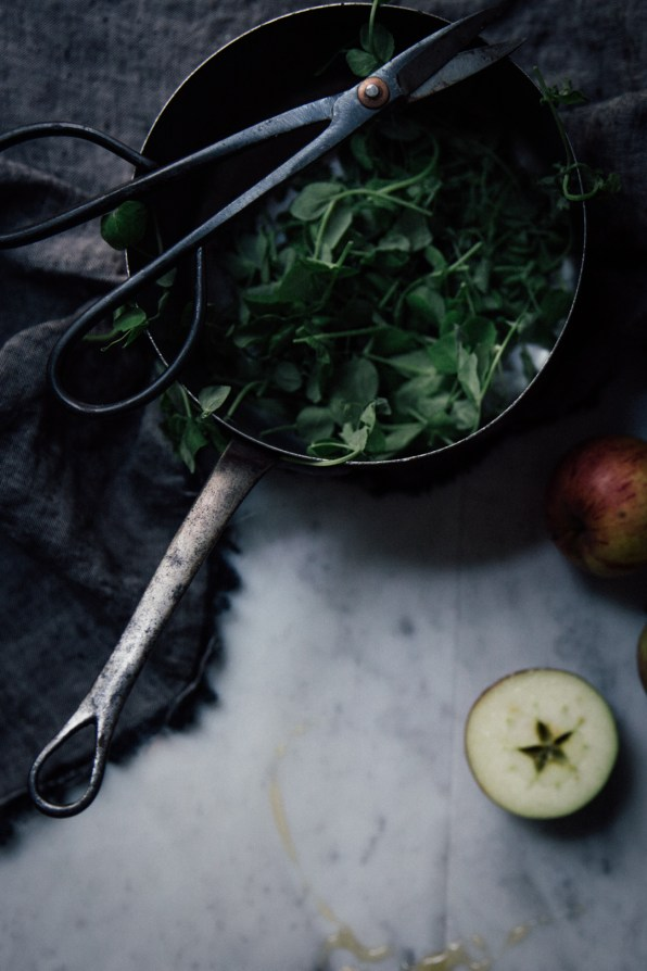 apple-ricotta-honey-toast-on-rye-by-christiann-koepke-of-christiannkoepke-com-2