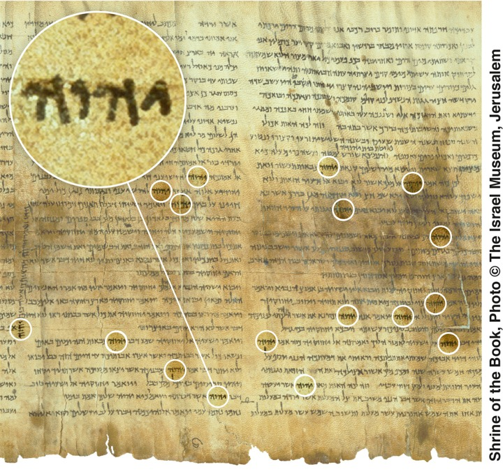 Dead Sea Scroll of Isaiah (Great Isaiah Scroll)