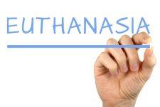 euthanasia-2