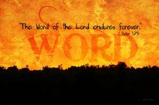 gods-word-endures-forever