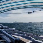Komodo Sailing