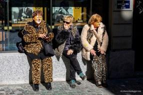 Leopardinnen