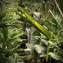 Masoala Rain Forest @ Zurich Zoo