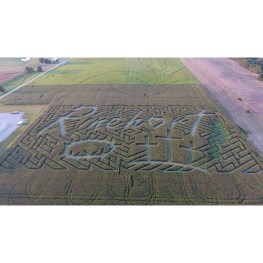 Rural Church Sees a-Maze-ing Opportunity in Cornfield