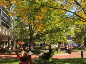 Student enjoy the fall weather as the leaves begin to change on Centennial Common.