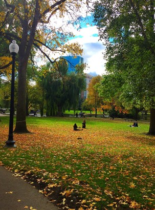 The first fall leaves fall on Boston Public Garden