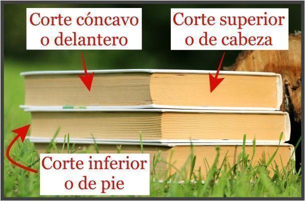 cortes-anatomia-del-libro-tips-christina-birs