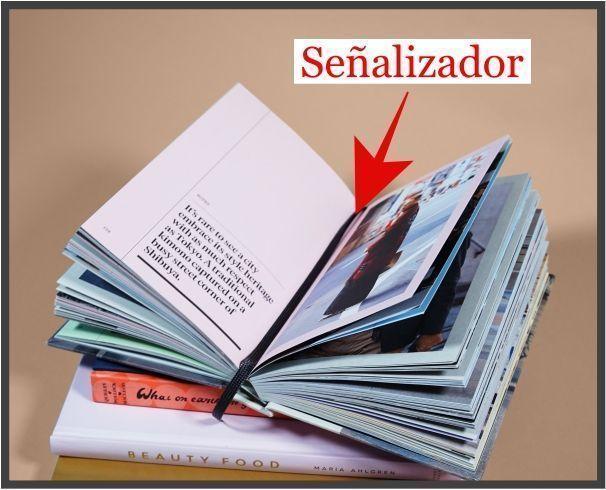 señalizador-anatomia-del-libro-tips-christina-birs
