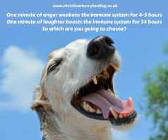 laughter boosts your immune system