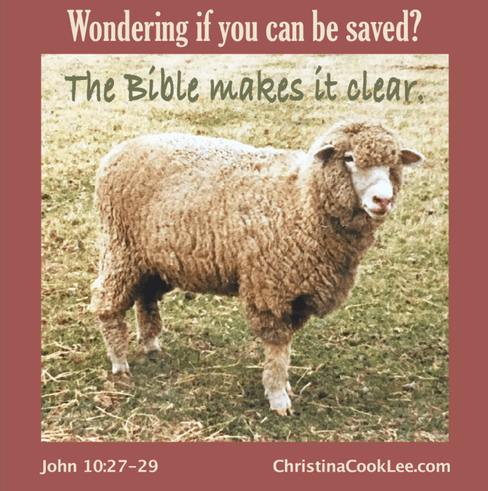 Wondering if you can be saved? The Bible makes it clear. John 10:27-29, christinacooklee.com
