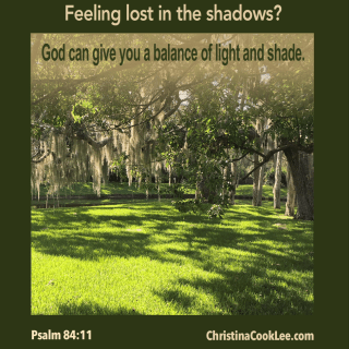 Feeling lost in the shadows?