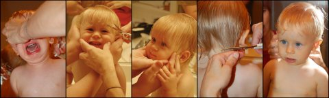 Noah's first haircut, June 2007
