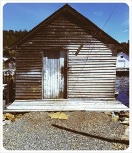 Cottrell's Cove, NL - Summer 2011