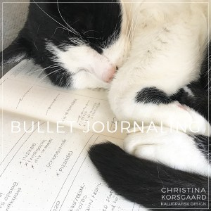 Bullet journaling - for begyndere