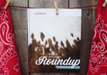 Roundup-cover-1100025
