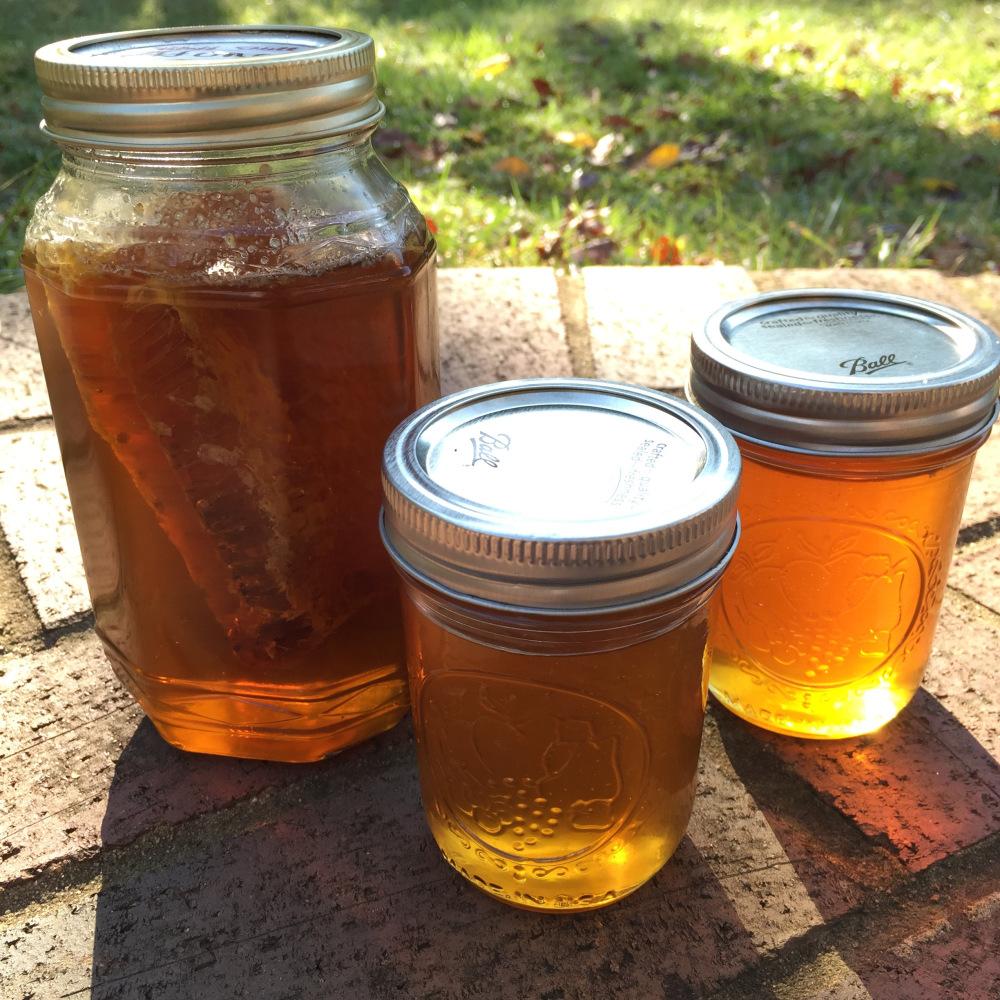 A Hankering for Honey