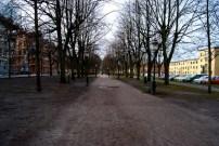 Gångbana i mitten av Kungsgatan i riktning mot stadscentrum.