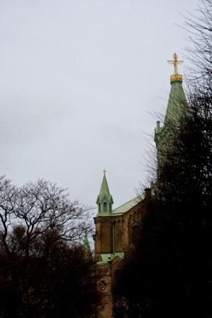 Enligt Sydsvenskan är området runt Sankt Pauli kyrka även en mötesplats för fåglar.
