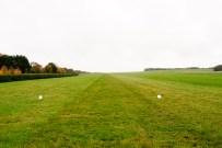 Green grass racing course