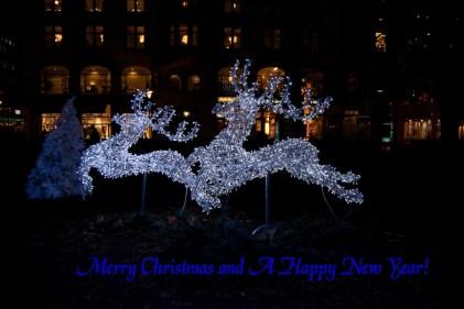 Christmas decorations at Gustav Adolfs torg.