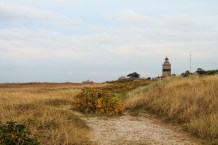 Falsterbo in southern Sweden.