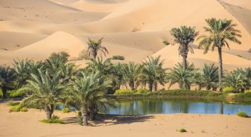 Your House Could Be the Oasis in an Inventory Desert   Simplifying The Market