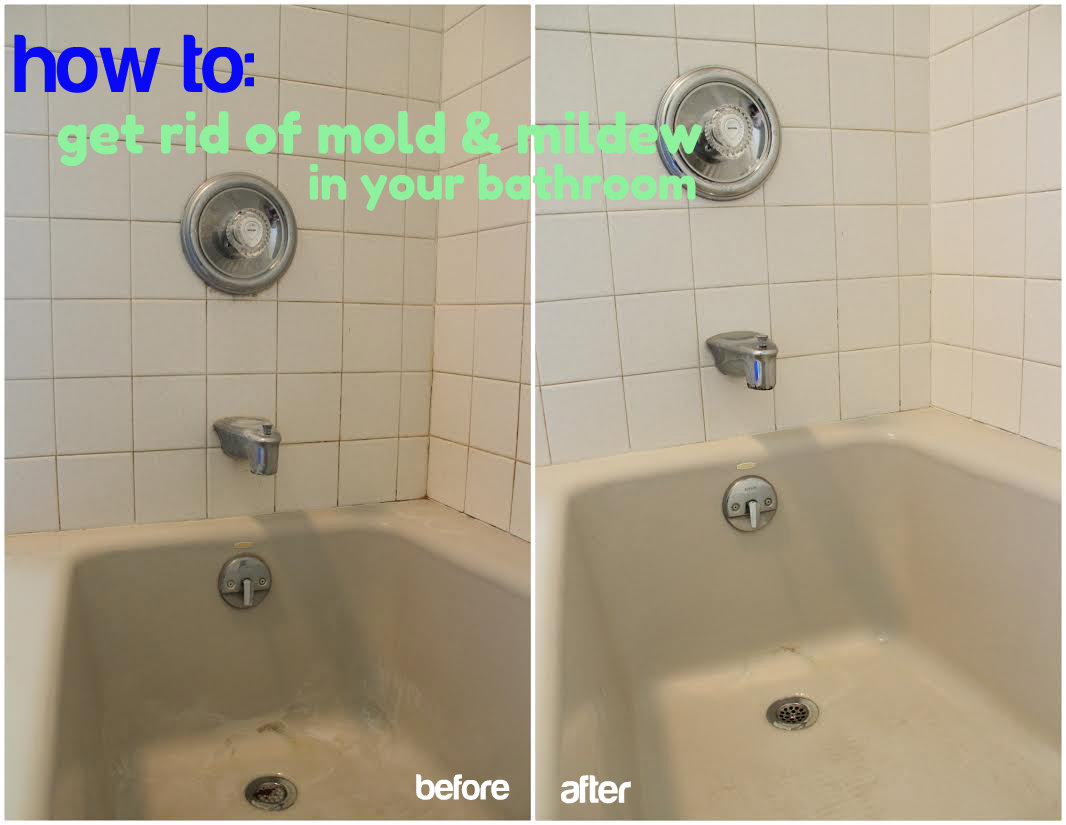 the dirty truth about my bathroom - christinas adventures