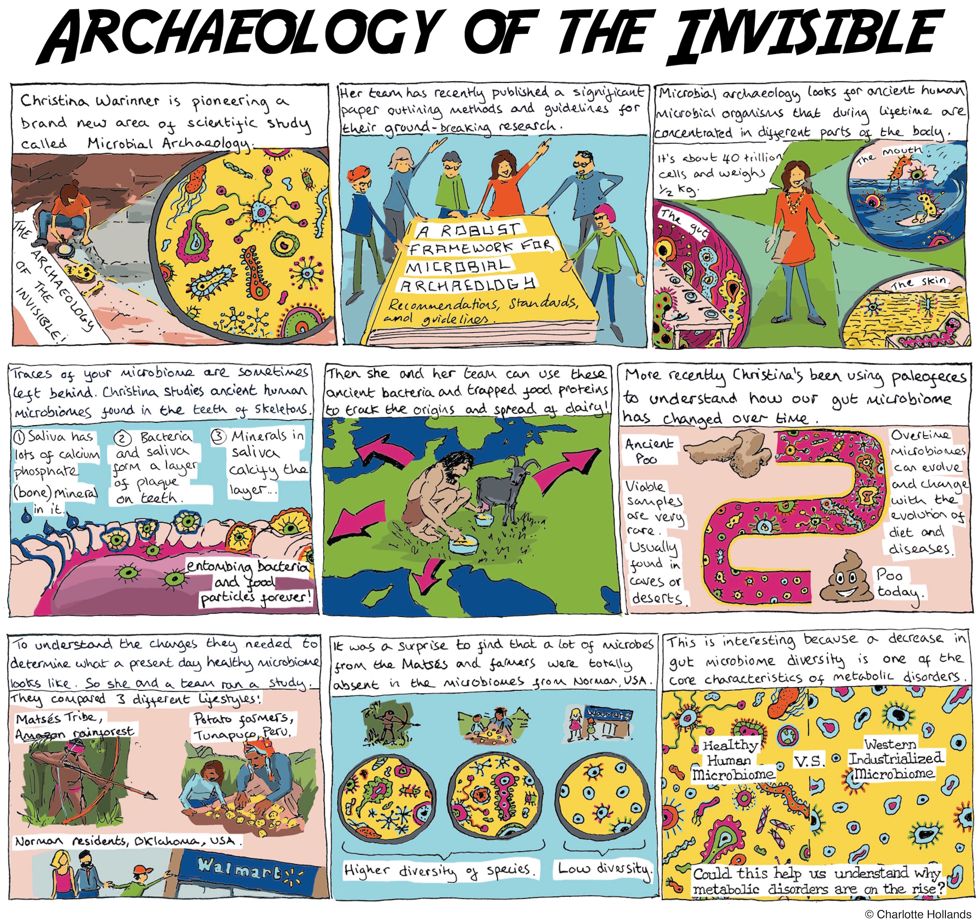 Anthropology News Magazine Archaeology Of The Invisible