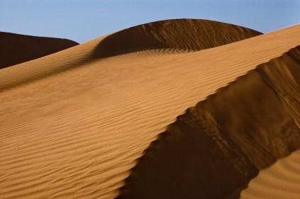 desert shadows-9